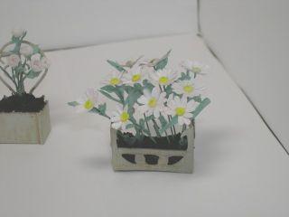 Fleurs4